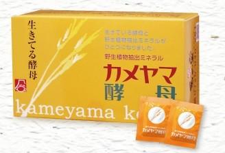 カメヤマ酵母菌サプリメントの購入ページへ