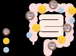 善玉菌と日和見菌、悪玉菌の割合を画像で示したもの