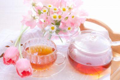 紅茶キノコなイメージ