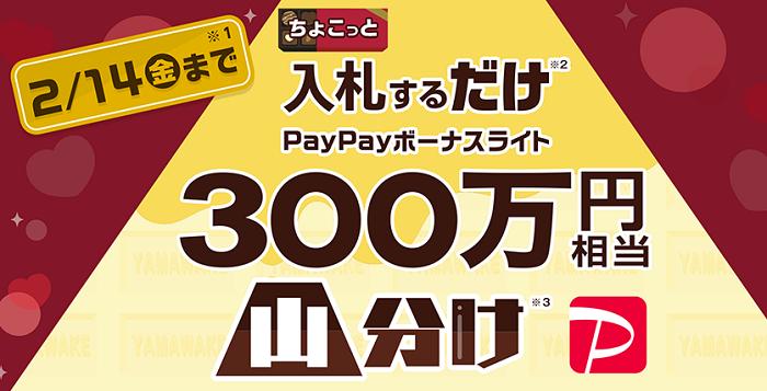 PayPayボーナスライト山分けキャンペーン